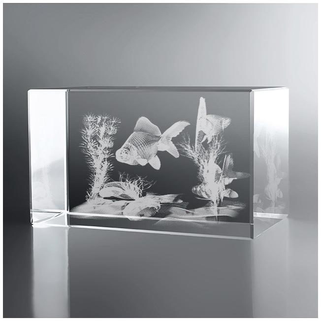 Bloc Horizontal 3D Aquarium Japonais, Pour une occasion particulièr...