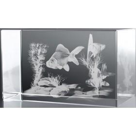 Bloc en verre gravure 3D Aquarium Japonais