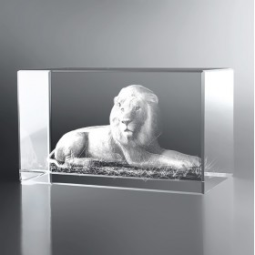 Bloc Horizontal 3D Lion