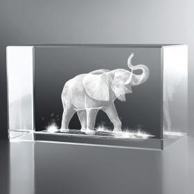 Bloc Horizontal 3D Eléphant