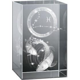Bloc en verre gravure 3D Poisson (Astro)