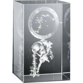 Bloc en verre gravure 3D Verseau (Astro)
