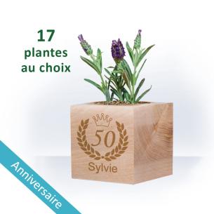 Plante Ecocube ANNIVERSAIRE à Personnaliser - Couronne pour  Joyeux...