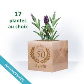 Plante Ecocube ANNIVERSAIRE à Personnaliser - Couronne
