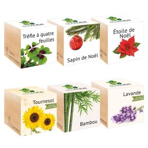 Trouvez l'Idée Cadeau Parfaite – Plante Ecocube MARIAGE à Personnal...